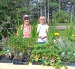 Water Valley Forest Nursery: flower baskets and plants