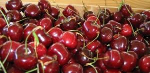 Bergen Market organic fruit