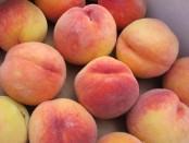 """organic """"Rising Star"""" peaches"""