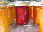 jams and jellies ... breakfast never tasted so great!
