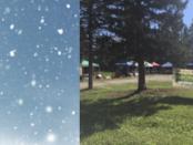 snow sun market